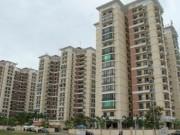 Chung cư-Nhà đất-Bất động sản - Không đặt cược tiền gửi của dân vào bất động sản
