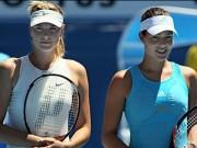 Thể thao - Sharapova sụp đổ, mỹ nhân nào chiếm ngôi hậu?