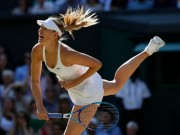 """Thể thao - Sharapova dính doping: Có người tư vấn """"chạy án"""""""