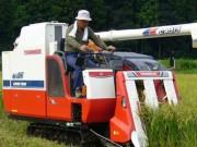 Tài chính - Bất động sản - Nhật Bản: Gom đất nông nghiệp bỏ hoang vào ngân hàng