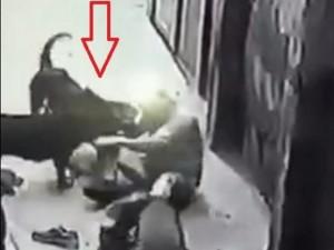 Giống chó Tây cắn chủ dã man ở Hà Nội nguy hiểm thế nào?