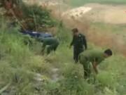 """Video An ninh - Phát hiện 1.600 cây cần sa sắp ra """"lộc"""" tại Bình Thuận"""