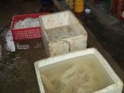 Thị trường - Tiêu dùng - Ớn lạnh thịt trâu bò tẩy ướp hóa chất