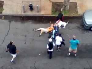 Thế giới - 5 video chó dữ cắn người gây bàng hoàng