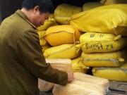 Thị trường - Tiêu dùng - Thu giữ 2 tấn ruốc nghi được làm từ sắn dây