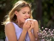 Sức khỏe đời sống - Hít phấn hoa làm tăng nguy cơ đau tim lên cao bất ngờ