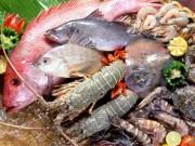 """Ẩm thực - Mẹo chế biến """"đánh bay"""" ấu trùng giun sán trong hải sản"""