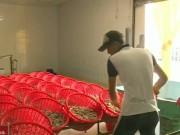 Thị trường - Tiêu dùng - Nguy cơ mất thương hiệu con tôm Việt vì nhập khẩu nguyên liệu
