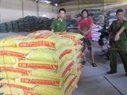 Thị trường - Tiêu dùng - Dùng chất cấm trong chăn nuôi: Thủ đoạn mới