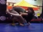 Thể thao - Nữ võ sĩ Jiu-Jitsu đả bại nam thủy quân lục chiến