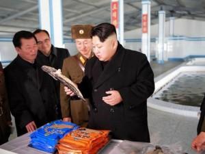 Thế giới - Triều Tiên cảnh báo nạn đói sẽ hoành hành