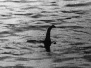 7 ảnh năm 2016 chứng minh quái vật hồ Loch Ness có thật