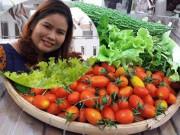 Bạn trẻ - Cuộc sống - Vườn rau sạch đón Tết của bà mẹ Sài thành khiến chị em thèm thuồng