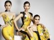 Dàn hoa hậu, mẫu Việt đọ sắc bên Hoa hậu Trái đất