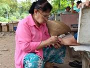 Nghệ sĩ Việt bị ám ảnh vì đón Tết cô đơn, nghèo khó một mình