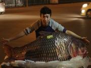 """Tin tức trong ngày - Cá hô đỏ """"khủng"""" gần 100kg xuất hiện ở Hà Nội"""