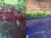 Sông màu đỏ-tím ở Hà Nội: Phạt nặng 5 cơ sở xả thải