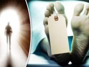 Thế giới - Sự sống vẫn tiếp diễn 2 ngày sau khi con người chết