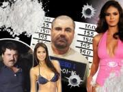 Thế giới - Những người đẹp trong đời trùm ma túy Mexico Chuột chũi