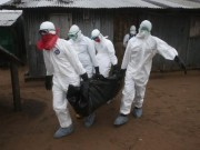 Tìm ra nguyên nhân chính khiến Ebola bùng phát thành đại dịch
