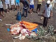 Bắt quả tang cặp tình nhân trộm bò rồi xẻ thịt tại chỗ