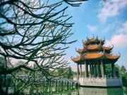 Tin tức trong ngày - Ngắm ngôi chùa cổ có vẻ đẹp bất tử với thời gian
