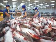 Thị trường - Tiêu dùng - Tập đoàn bán lẻ lớn nhất châu Âu nói gì về cá tra Việt?