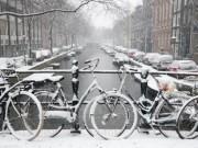 Du lịch - Amsterdam, mùa tuyết trắng phủ kín những con đường