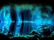Du lịch - Khám phá thế giới bí ẩn trong lòng đại dương