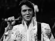 Đi tìm sự thật cái chết của  Vua nhạc Rock  Elvis Presley