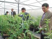 Tài chính - Bất động sản - Nên lập 'ngân hàng đất nông nghiệp'