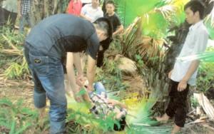 An ninh Xã hội - Kỳ án giết người: Bất thường lọ thuốc diệt cỏ