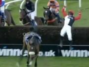 Thể thao - Đứng tim với cú ngã ngựa bắn tung người