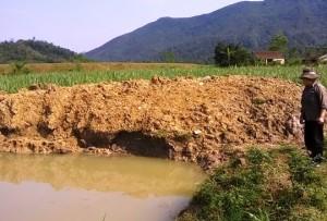 Tin tức Việt Nam - Theo bố mẹ đi ăn cưới ra ao tắm, 2 bé trai chết đuối