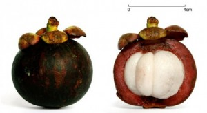 Sức khỏe đời sống - 9 loại trái cây chống lão hóa hàng đầu