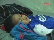 Video An ninh - Cây đổ đè bẹp chòi, 3 người trong một gia đình tử vong