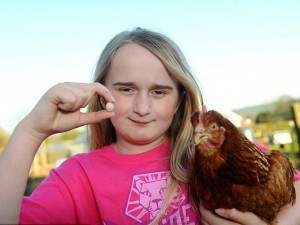 Phi thường - kỳ quặc - Thích thú ngắm quả trứng gà nhỏ nhất thế giới