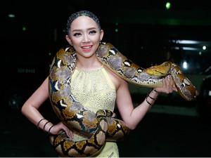 Ca nhạc - MTV - Cận cảnh Tóc Tiên chơi đùa với trăn