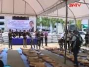 Thị trường - Tiêu dùng - Thái Lan: Bắt vụ buôn lậu 3,1 tấn ngà voi châu Phi