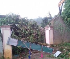 Tin tức trong ngày - Lốc xoáy, gần trăm nhà tốc mái, nhiều người thoát chết