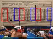 Võ thuật - Quyền Anh - Nghi án gian lận kết quả Mayweather-Pacquiao