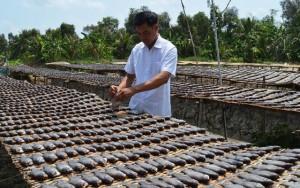 Thị trường - Tiêu dùng - Giàu lên nhờ đặc sản cá thát lát, khô sặc rằn