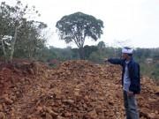 An ninh Xã hội - Giết người ở Đắk Nông, xuống Long An đầu thú