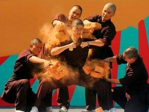 Nức tiếng võ Việt trên dãy Himalaya (Kỳ 3)