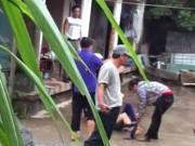 An ninh Xã hội - Đánh hàng xóm bất tỉnh vì mâu thuẫn đất đai