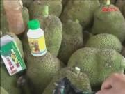 Video An ninh - Cảnh báo tình trạng tiêm chất kích thích vào trái cây