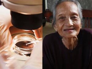 Tin tức trong ngày - Cụ bà VN cao tuổi nhất thế giới: Không thể đo tuổi bằng tóc