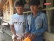 Video An ninh - Đột nhập nhà hàng xóm trộm vàng rồi giấu ở chuồng lợn