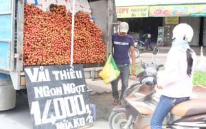 Thị trường - Tiêu dùng - Vải thiều Nam tiến: Lo đường xa, khó bảo quản
