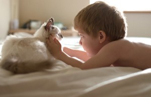 8X + 9X - Bộ ảnh đẹp ngỡ ngàng của bé trai bên chú mèo